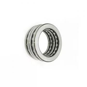 Cylindrical Roller Bearing Nu 309 Ecj