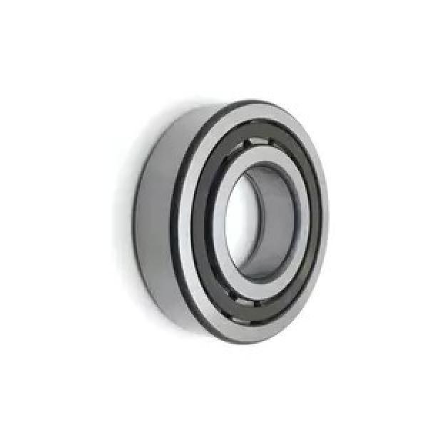 Cylindrical Roller Bearing Nu244 M Brass Cage Nu246 Nu212 Bearing #1 image
